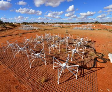 Tiles at the Murchison Widefield Array